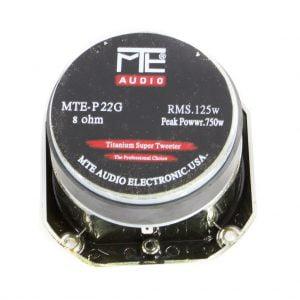mte-P22G